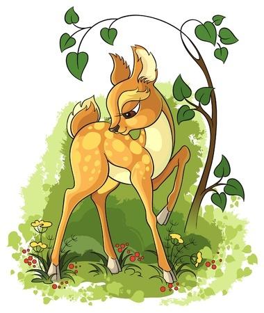 12492221 - young deer